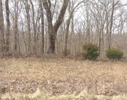 Lot 2 Tyler Branch  Road, Perryville image