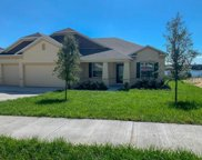 318 Nancy Lou Road, Apopka image