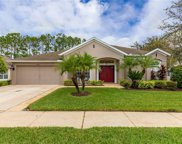 20851 Riverforest Drive, Land O' Lakes image