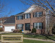 2257 Camberling Drive, Lexington image
