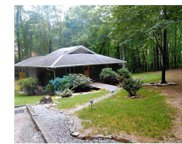 509  Rippy Road, Tryon image