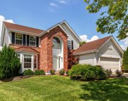 16843 Crystal Springs, Chesterfield image