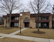 1350 North Sterling Avenue Unit 101, Palatine image