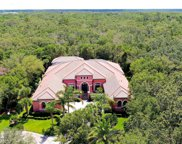 6 SPANISH OAKS CT, Palm Coast image