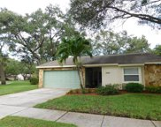 2114 Little Brook Lane, Clearwater image