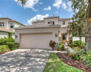 2428 Spring Hollow Loop, Wesley Chapel image