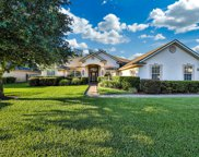 3912 DEERTREE HILLS DR, Orange Park image