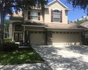 10220 Evergreen Hill Drive, Tampa image