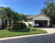 25163 Golf Lake Cir, Bonita Springs image