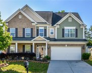 2003 Canopy, Indian Trail image