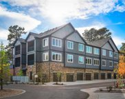 31192 Black Eagle Drive Unit 303, Evergreen image