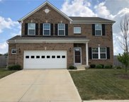 10321 Crooked Stick  Drive, Brownsburg image
