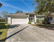 1150 Purple Flower Court, Brooksville image