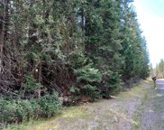 NNA Lot 3 Kalispell Bay Rd, Priest Lake image