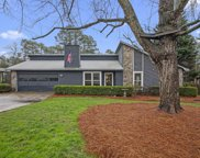 10195 Old Woodland Entry, Alpharetta image