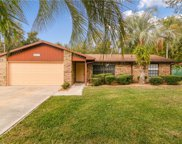 4025 Lake Eleanor Drive, Mount Dora image