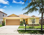 11142 Goldenrod Fern Drive, Riverview image