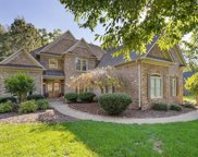 6305 Blue Aster Trace, Summerfield image