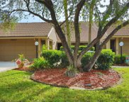3222 Jademoor Circle, Palm Harbor image