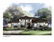 301 Stockman Drive, Dripping Springs image