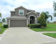 12309 Eagle Swoop Place, Riverview image