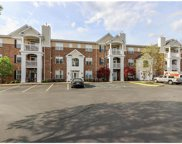 1151 Mill Crossing Unit #100, St Louis image