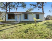 388 Wenzel, Palm Bay image