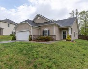 779  Ivy Trail Way, Fort Mill image