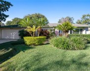 1036 Candle Berry Road, Orlando image