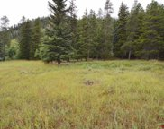 Lot 3 County Road 54, Almont image