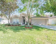 139 Summit Ash Way, Apopka image