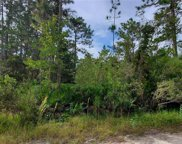 2311 Red Ember Road, Oviedo image