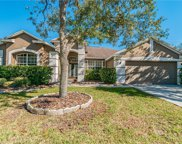 18103 Kennesaw Court, Tampa image