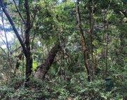 26 Dogwood Trail, Bald Head Island image