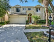 18158 Sandy Pointe Drive, Tampa image