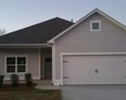 109 Shelby Farms Dr, Alabaster image