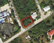 99 San Salvador Unit Lot 9, Duck image