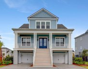 2842 Dragonfly Circle, Mount Pleasant image