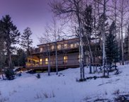 30727 Conifer Mountain Drive, Conifer image