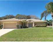 1191 Willow Springs Drive, Venice image