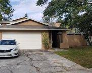4913 Rockledge Creek, Tampa image