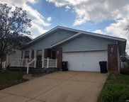 8715 Carriage Way, St Louis image