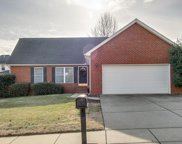 1309 Chapman Ct, Spring Hill image