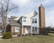 363 Willow Parkway, Buffalo Grove image