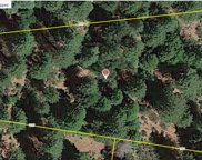 5189  Mt Pleasant Drive, Grizzly Flats image