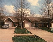 12393 Spring Meadow Dr, Louisville image