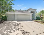 8207 Pinewood Run Court, Tampa image