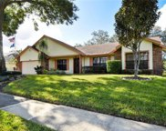 1130 Red Dandy Drive, Orlando image