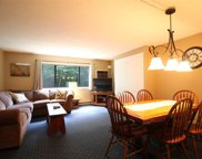 23 Black Bear Way Unit #215, Waterville Valley image