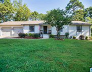 1364 Shades Run Cir, Hoover image